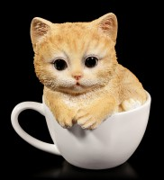 Katzen Figur - Gelbes Kätzchen in Tasse