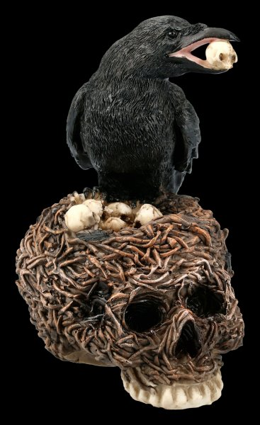 Raven Figurine on Skull-Nest