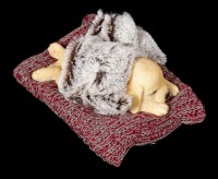 Hunde Figur schlafend auf roter Decke