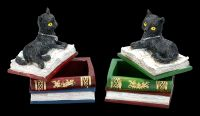Schatullen Set - Katzen auf Büchern klein