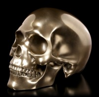 Human Skull - bronzed