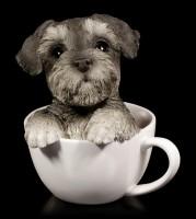 Hunde Figur - Schnauzer Welpe in Tasse