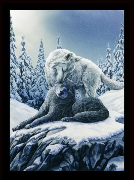 Large Canvas with Wolves - Snow Kisses