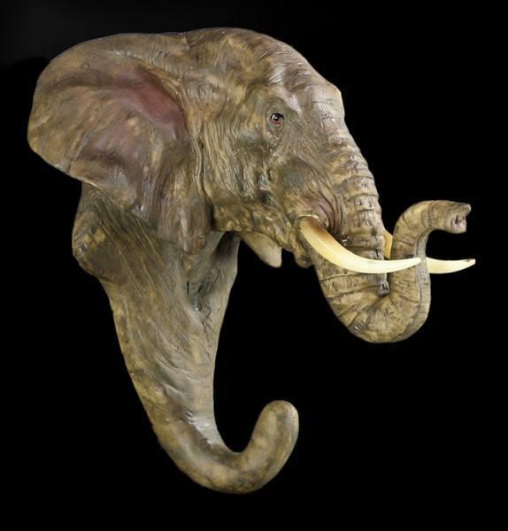 Kleiderhaken - Elefant