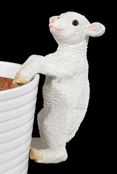 Gartenfigur - Schaf als Blumentopf- Zaunanhänger
