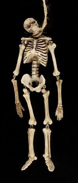 Skelett Figur - Erhängtes Skelett