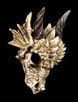 Dragon Skull - Dragon Skeleton
