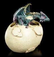 Dragon Box - Aleister hatches from Egg