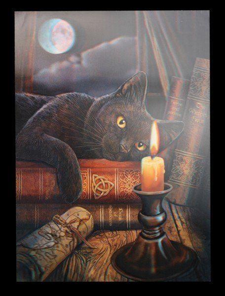 3D Bild Katze - Witching Hour