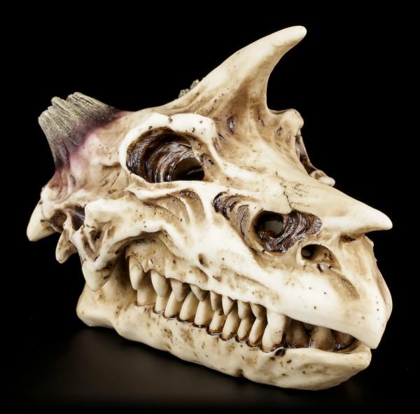 Schatulle - Horn-Drachen Totenkopf