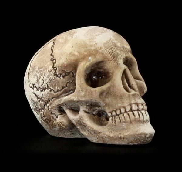 Totenkopf mini - menschlich