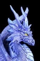 Drachen Figur - Nightfall Dragon