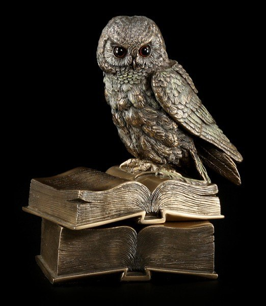 Box - Owl Sitting On Books