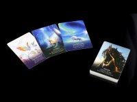 Orakelkarten - Oracle of the Unicorns