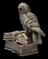 Schatulle - Eule sitzt auf Büchern