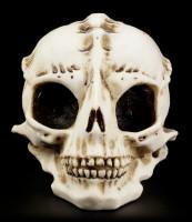Alien Totenkopf - Der Besucher - Knochenfarben