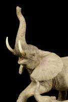 Elefanten Figur Familie - Mutter mit zwei Kindern