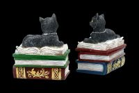 Boxes Set of Two - Cats on Books Small