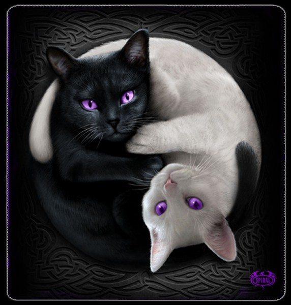 Yin Yang Cats - XL Fleece Blanket