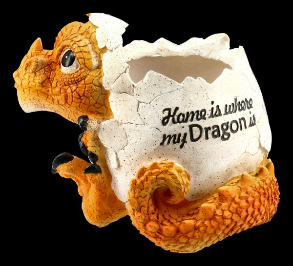 Dragon Pot - Home is where my dragon is