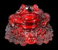 Rote Geldfrosch Figur mit Münzen