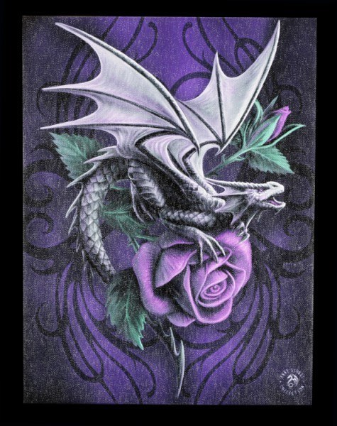Kleine Leinwand - Dragon Beauty by Anne Stokes