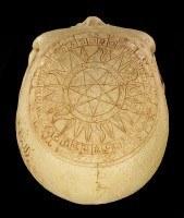 Totenkopf - Crane Astrologie