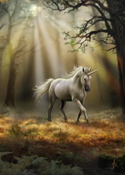 Fantasy Greeting Card - Glimpse of a Unicorn