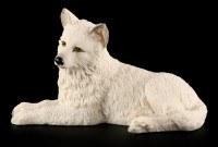 Wolf Welpe - Weiß liegend