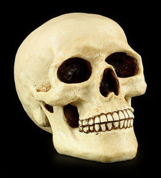 Totenkopf Spardose - Menschen Schädel