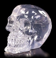 Translucent Skull neutral - Clear Thinking