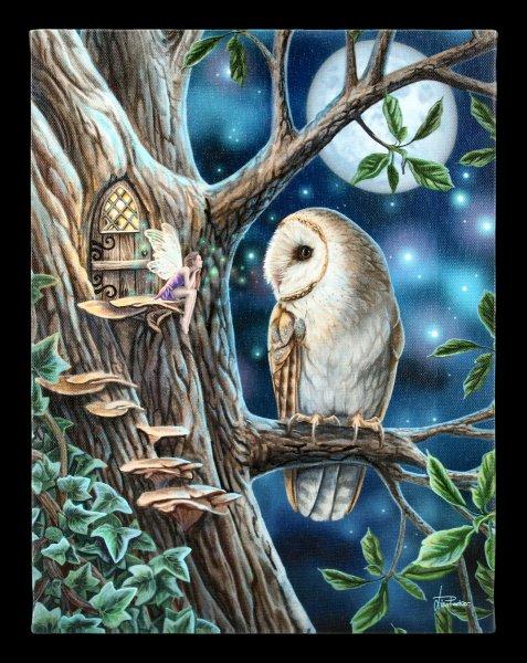 Kleine Leinwand mit Eule - Fairy Tales
