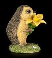 Funny Hedgehog Figurine with Daffodil - Congratulations