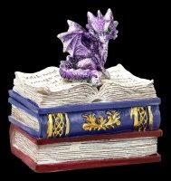 Drachen Schatulle - Dragonling Diaries - lila