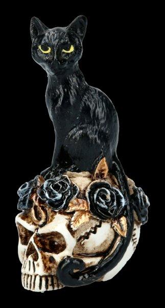 Alchemy Cat on Skull - small