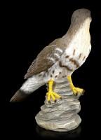 Garden Figurine - Hawk turns Head