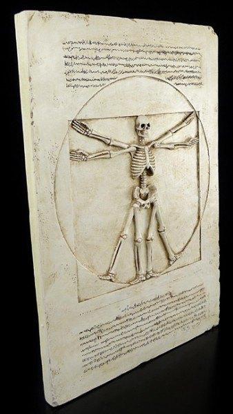 Wandrelief - Vitruvianisches Skelett