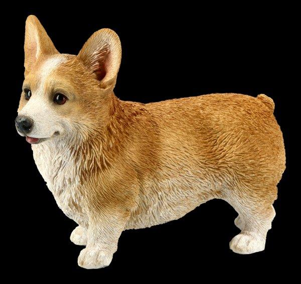 Dog Figurine - Corgi