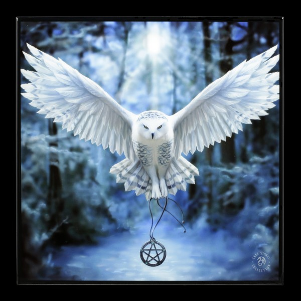Small Crystal Clear Picture with Owl - Awaken Your Magic