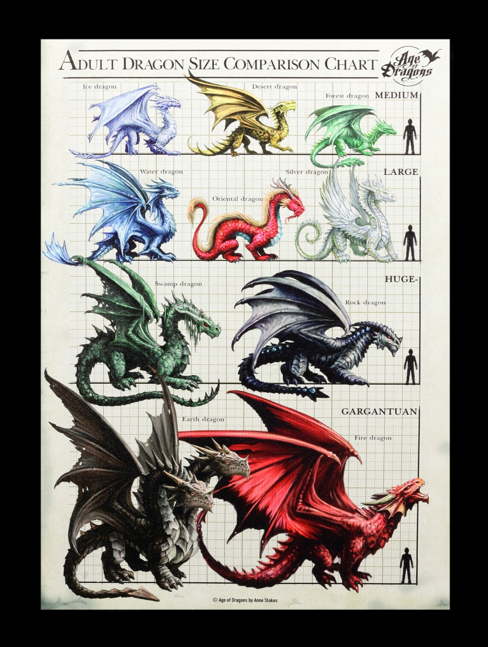 Large Canvas - Dragon Size Chart