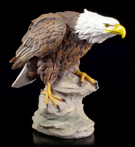 Gartenfigur - Adler auf Fels sitzend