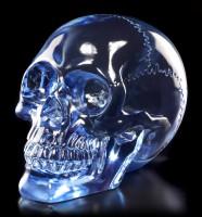 Translucent Skull - Light Blue