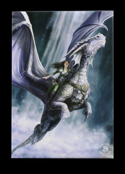 Magnet mit Drache - Take To The Air by Anne Stokes