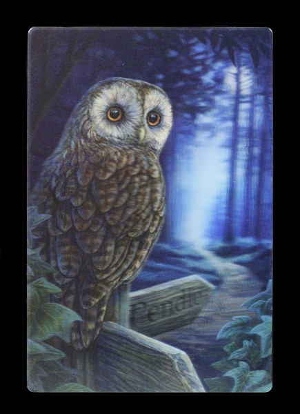 3D Postcard with Owl - Way of the Witch