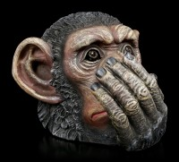 Chimpanzee Heads - No Evil