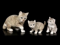 Baby Katzen Figur - Amerikanisch Kurzhaar sitzend