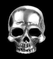 Alchemy Skull Faux Ear Stretcher - Tomb Skull Horn