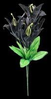 Kunstblume - Schwarze Lilie
