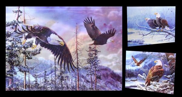 3D-Bild 3in1 mit Adler - König der Lüfte
