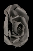 Black Rose Head small